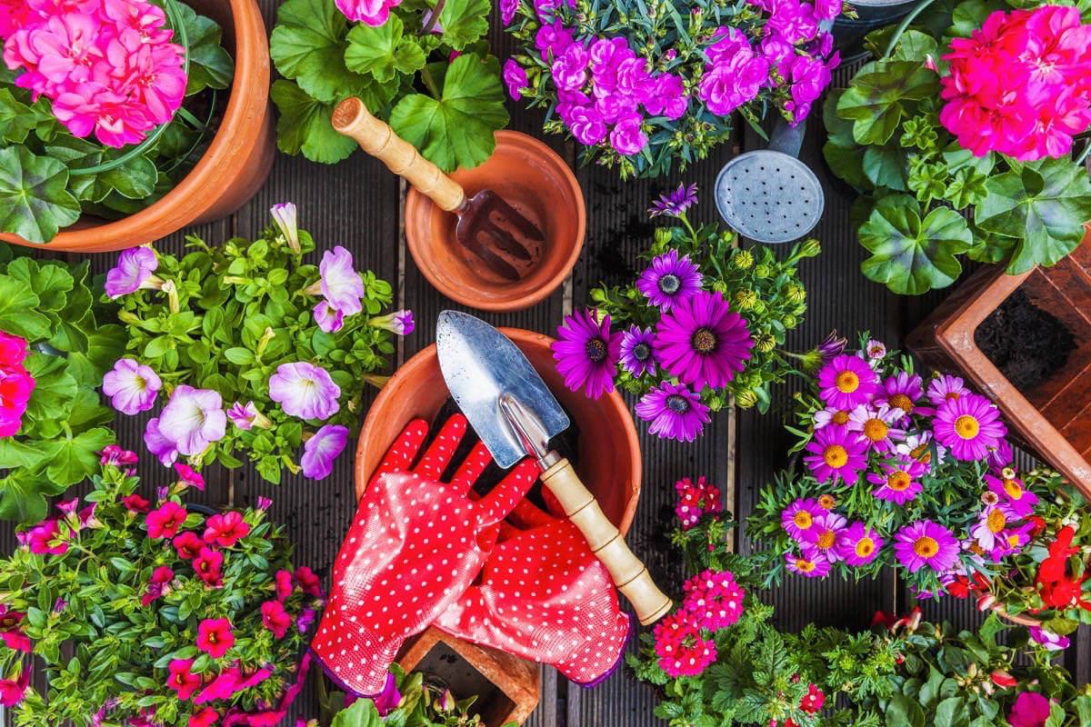 Kylvetään kevään siemenet
